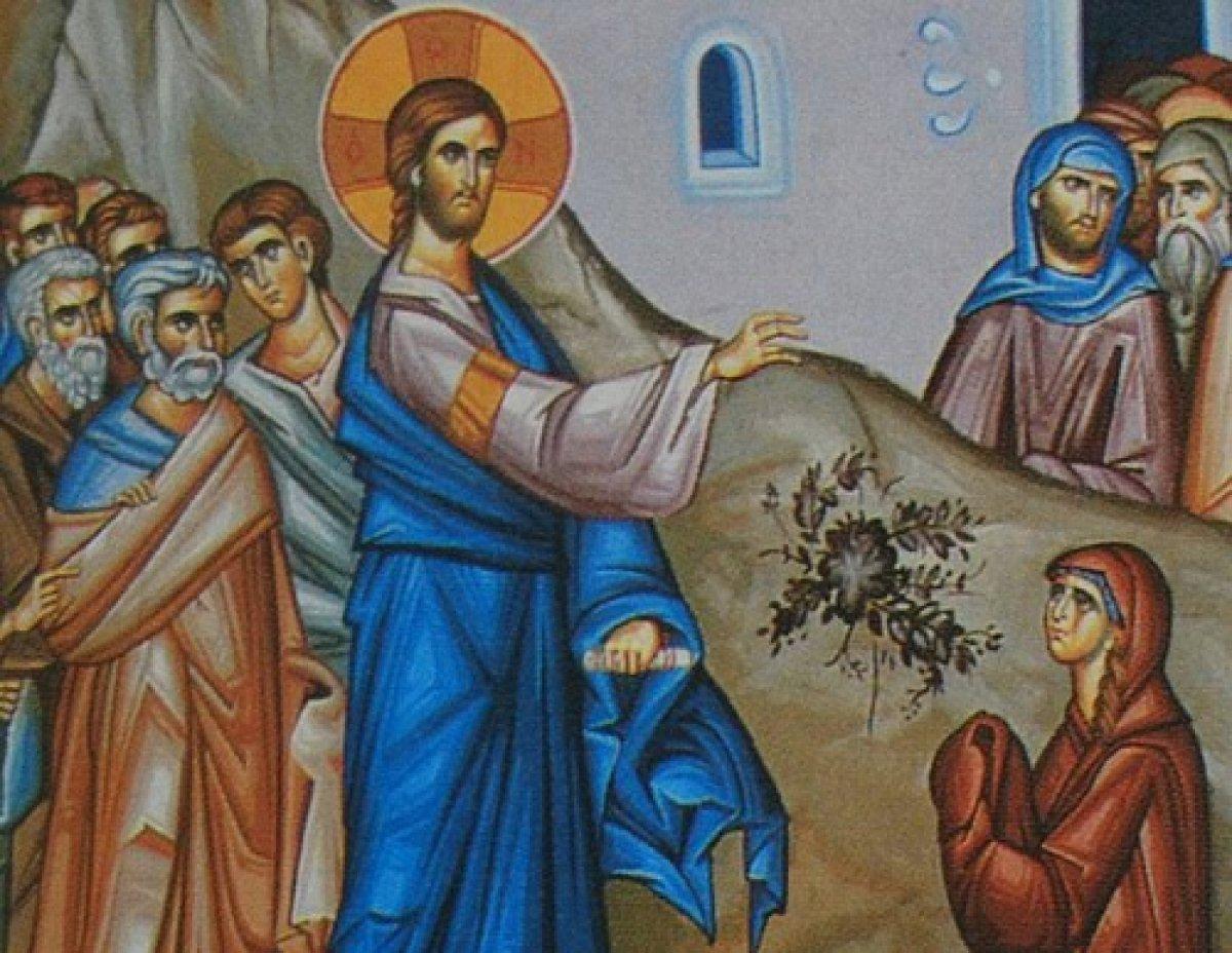 Λειτουργίες-Κηρύγματα 29 Ιανουαρίου-1η Φεβρουαρίου 2017