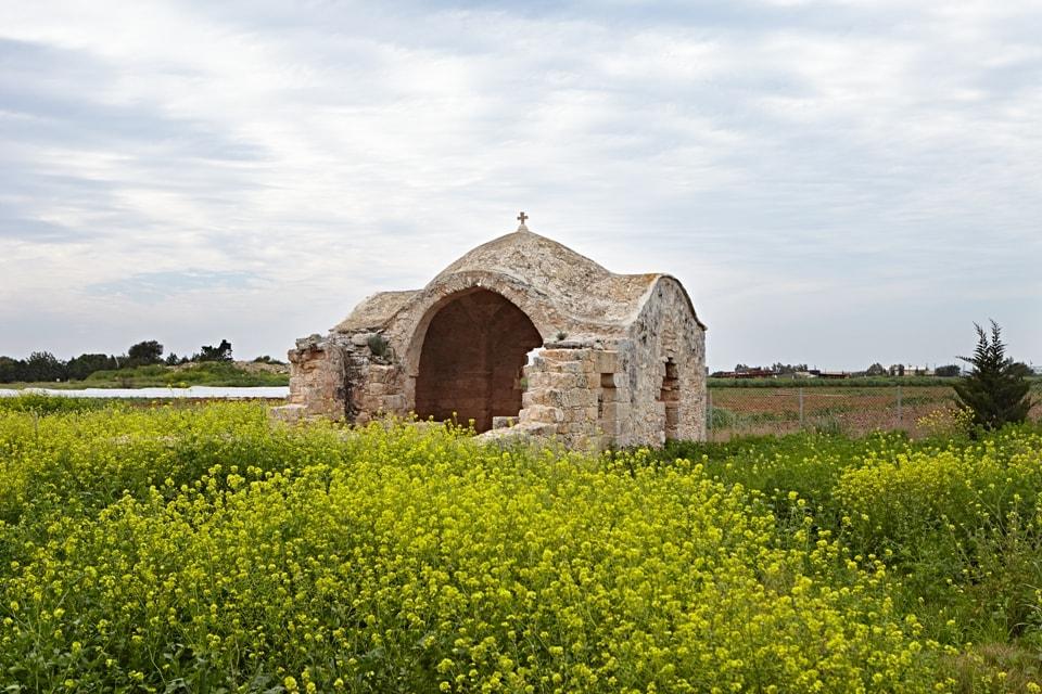 Agios Theodoros Xortakion Sotira IMG 0369